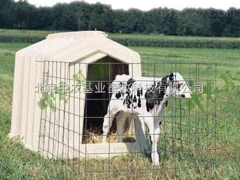 犊牛岛犊牛室犊牛栏