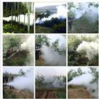 轻巧灵便耐用的烟雾机 果树专用杀虫弥雾机