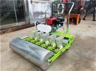 多种款式的蔬菜精播机 西兰花青菜播种机