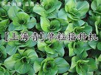 上海青单粒精播机免间苗叶菜播种机定做厂家