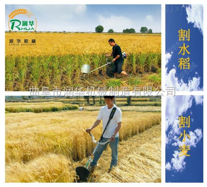 小型稻麦收割机 自动清理修剪割草机