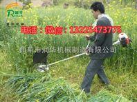 用途范围广割草机 多功能背负式牧草收割机