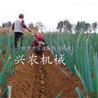 xnjx-7.5大棚草莓种植手扶式开沟机两面翻土培土机