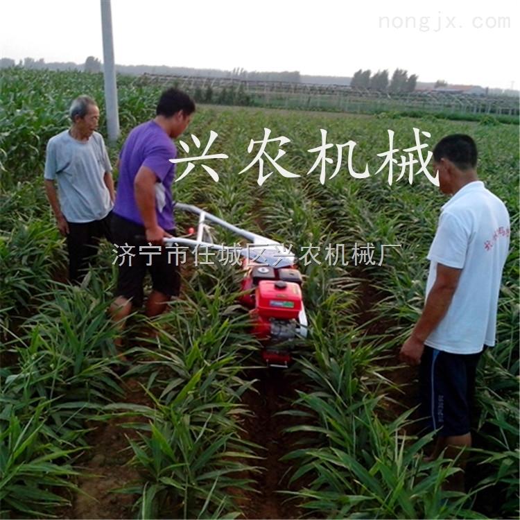 大葱大姜开沟机视频 直销供应土豆培土机