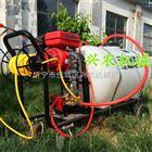 热卖果园杀虫打药机 大棚果蔬脉冲式烟雾机