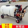 手推动力汽油喷雾器 加长水管麦田打药机