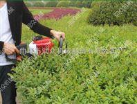 绿篱修剪机 单刃绿篱机 绿化专用设备