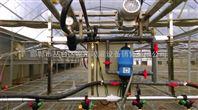 自走式调速遥控温室喷灌机喷水车