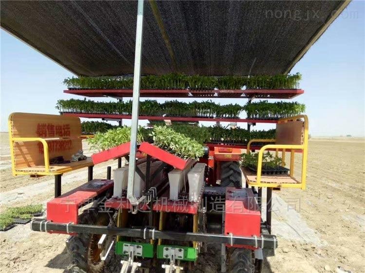 适合种植各种蔬菜番茄移栽机宁津田耐尔