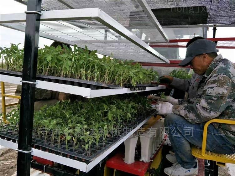 高工作效率高速度辣椒移栽机