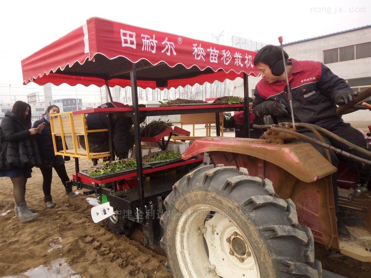番茄移栽机厂家直销订做使用安全宁津田耐尔