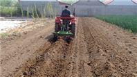 红薯 土豆 适合各种作物田间 单垄起垄犁
