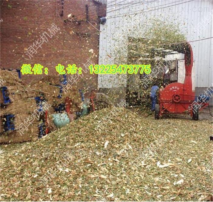 玉米秸秆铡草粉碎机 厂家直销多用途揉丝机