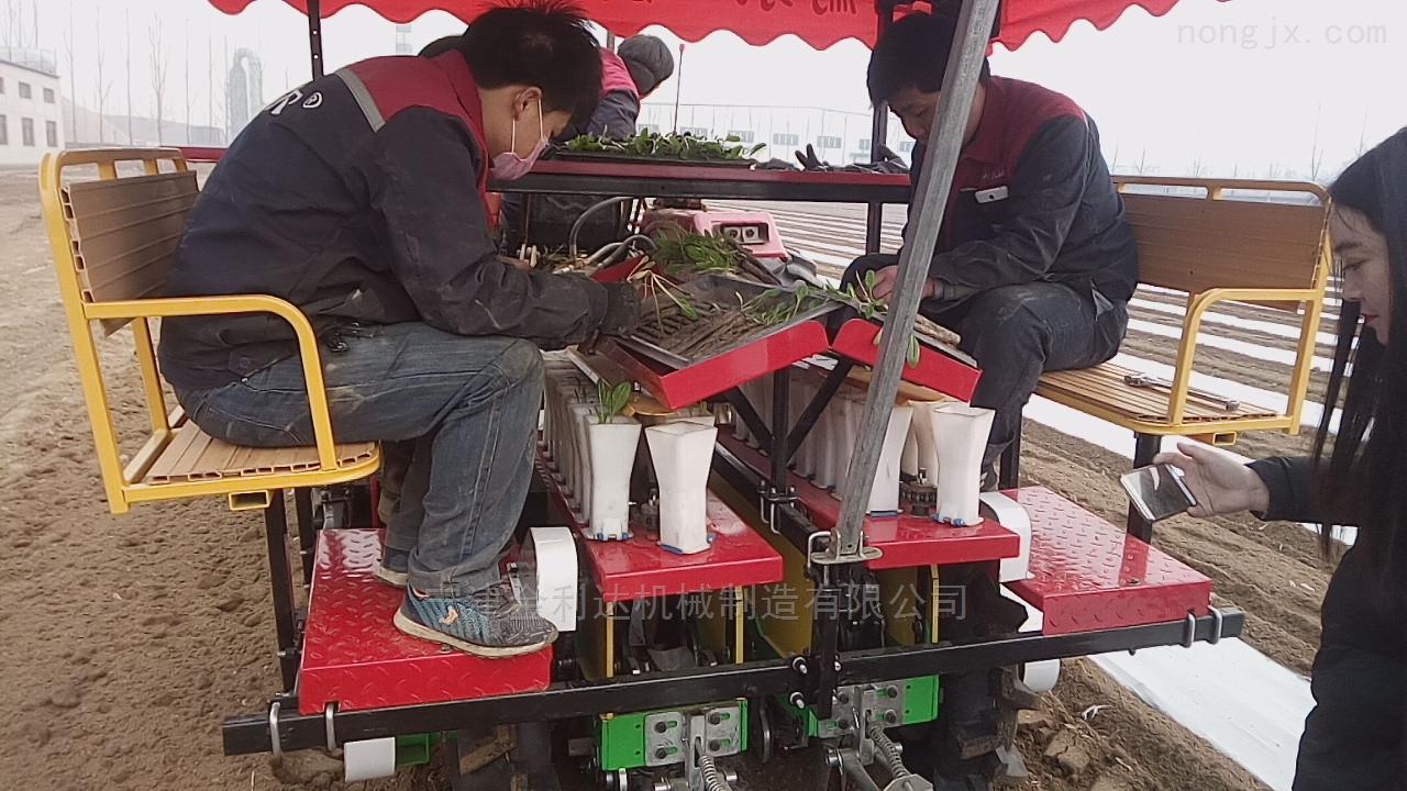 性能稳定三包服务完善番茄移栽机宁津田耐尔