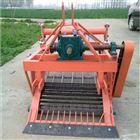 拖拉机带两行土豆收果机 80公分宽收获机