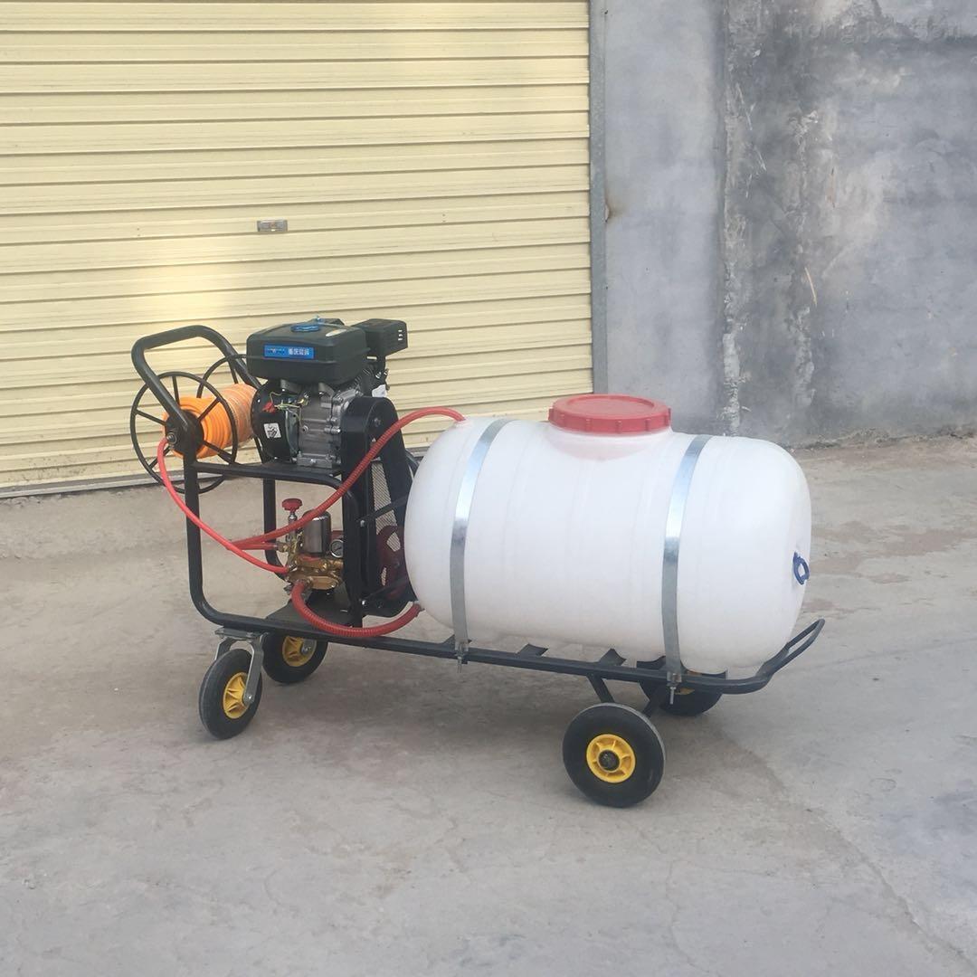 双喷杆农用果树庄稼杀虫喷雾器 小型打药车