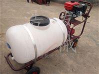 农用高压喷雾器 单架式远射程打药喷雾机