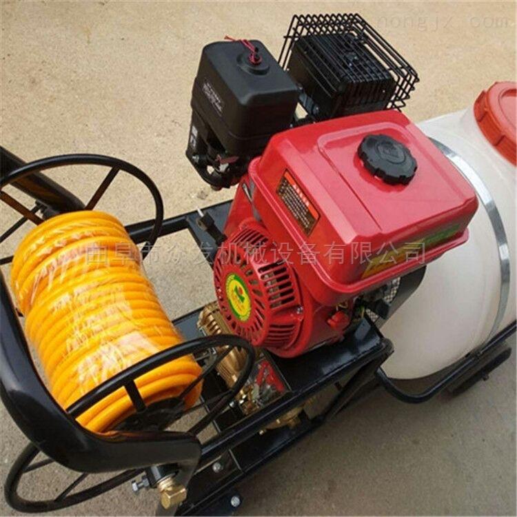 农用小型背负式喷雾器 汽油二冲程喷粉机