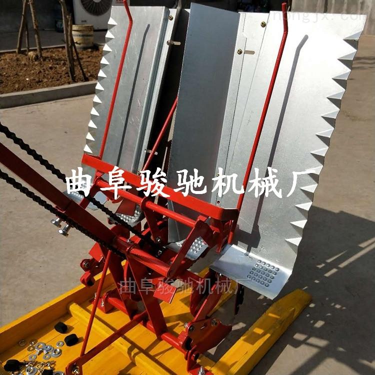 小型插秧机 水稻专用插秧价格