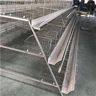 宏盛厂家批发常规镀锌三层四门阶梯蛋鸡笼