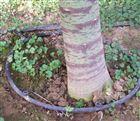大棚水肥一体化果园灌溉用压力补偿式滴头