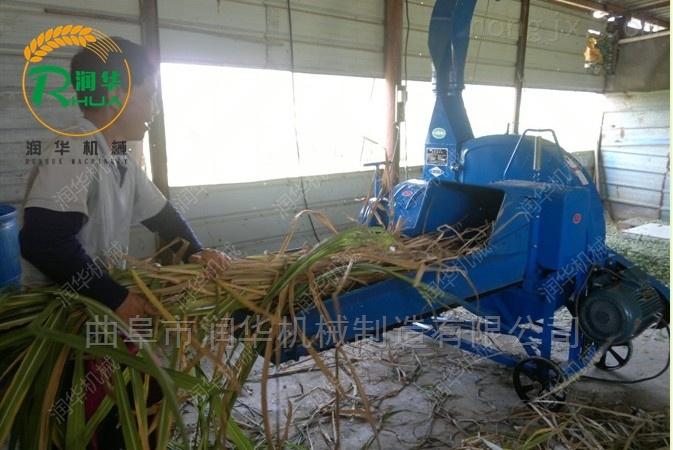 秸秆干湿两用铡草机 黄牛饲料稻草切碎机