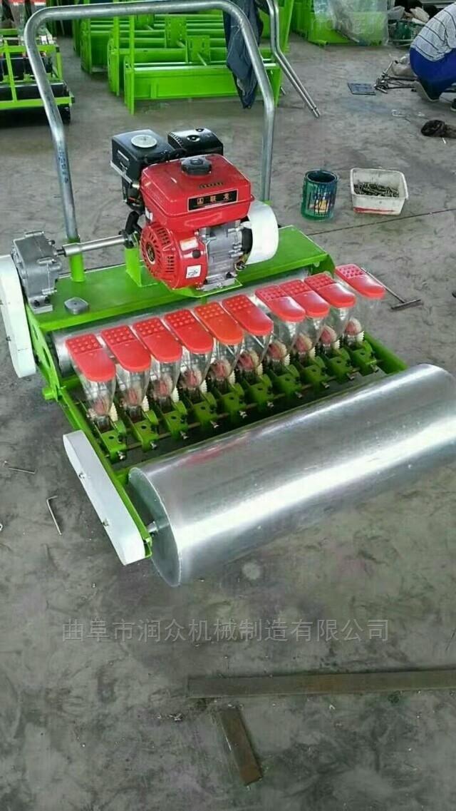 行距可调的萝卜播种机 手推式上海青精播机