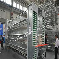 H型层叠式鸡笼全自动养鸡设备的厂家