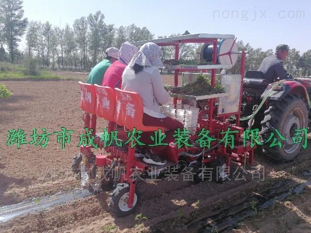 多功能蔬菜移栽机,质量有保证