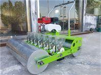 黄瓜蔬菜播种机 手推汽油精播机 大棚种植机