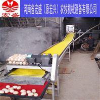 河南宏盛厂家供应自动化蛋鸡集蛋设备