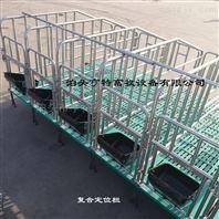 母猪定位栏育肥栏厂家猪场定制