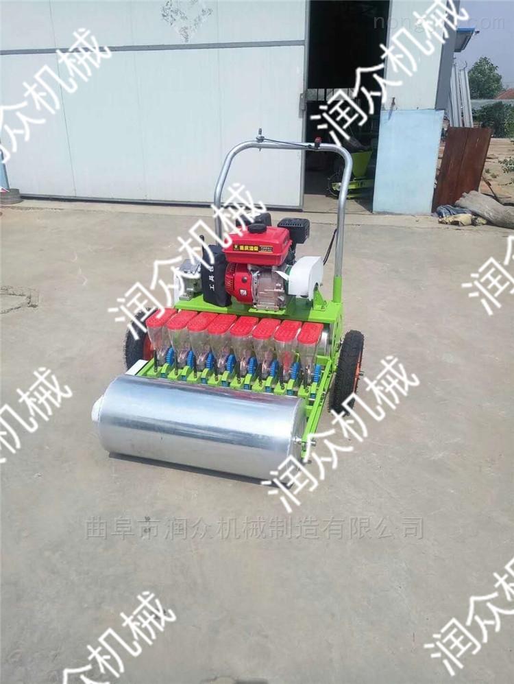 RZ-BZJ-萝卜芹菜播种机 手推式汽油蔬菜育苗机