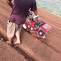 大葱种植开沟机 农用手扶旋耕机