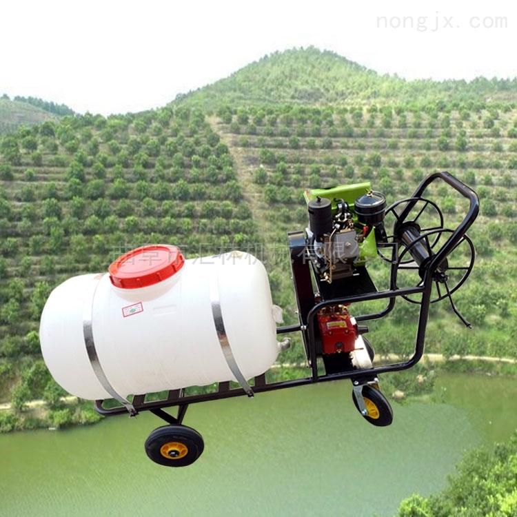 葡萄园打药机 手推车农用打药车 高压喷雾器