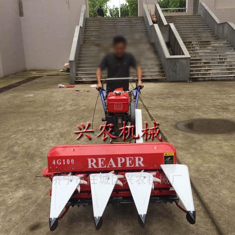 自走式水稻小麦收割机手推式柳条桑条割晒机