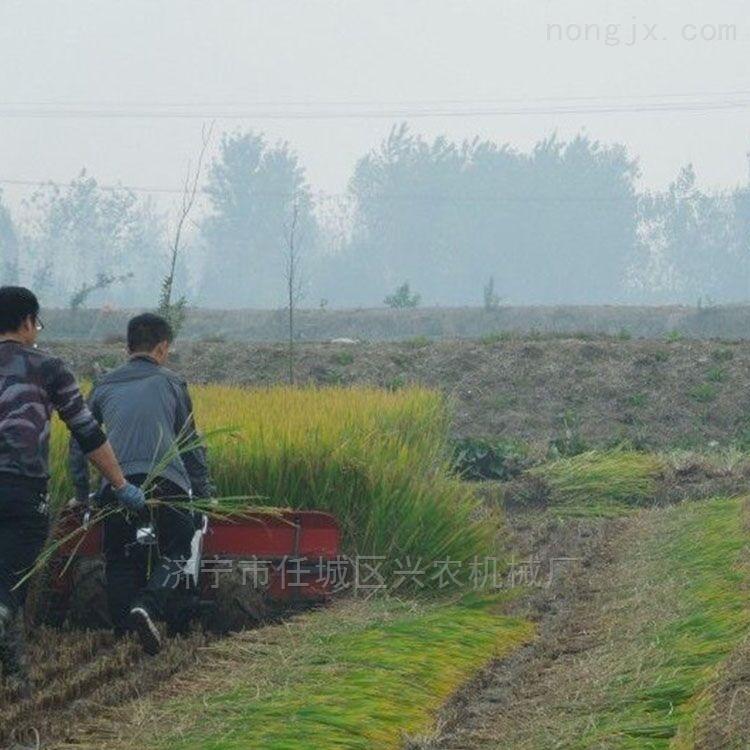 广西水稻小麦收割机前置式玉米秸秆割晒机