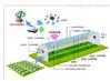 设计定制温室大棚环境控制系统,环控电箱