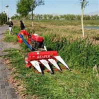 玉米秸秆苜蓿通用型收割机高效率割晒机