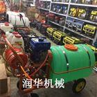 高压汽油喷药拉管打药机 小麦打虫喷雾器