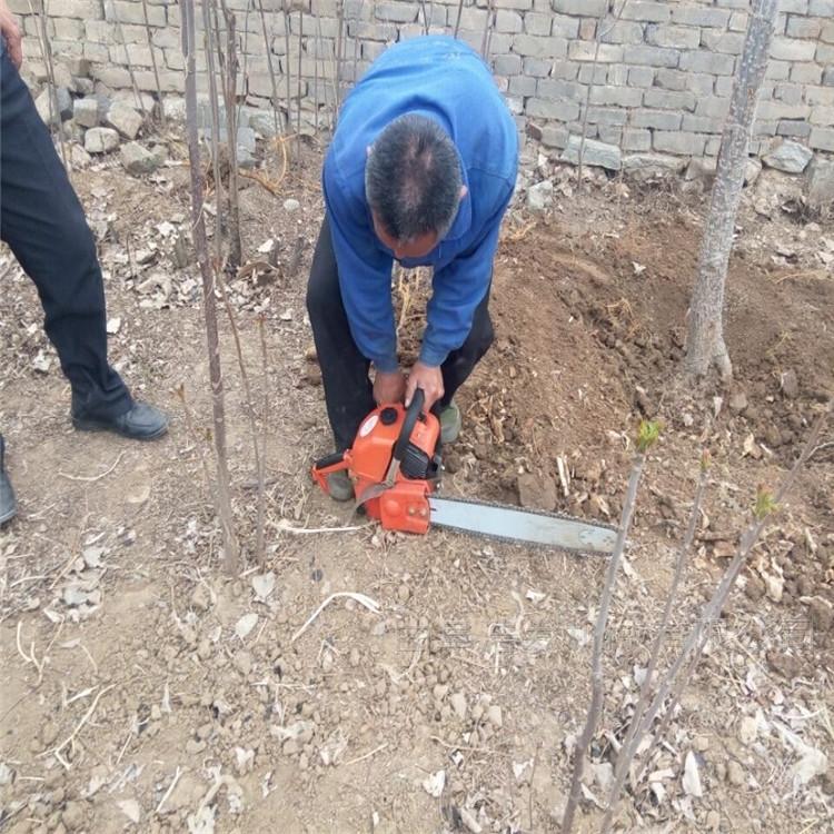 大功率汽油鋸齒挖樹機 家用手提式起樹機