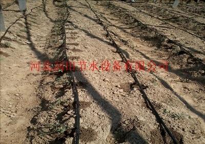 四川资中县滴灌带农用滴灌带