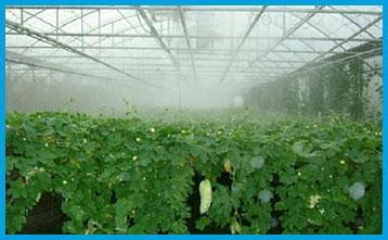 溫室大棚專用加濕器