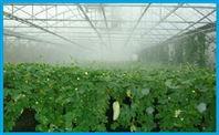 温室大棚加湿器 花卉种植加湿啪啪社区手机版