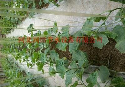 资阳市滴灌带价格农业滴灌管