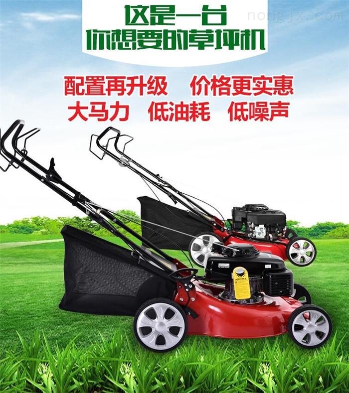 汽油机牧草割草机 三角地带松土打草机