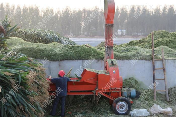 牛场饲料揉丝机 花生秧秸秆粉碎机 铡草机