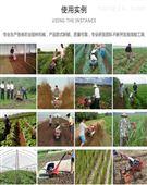 果园开沟培土机 农用大棚旋耕管理机
