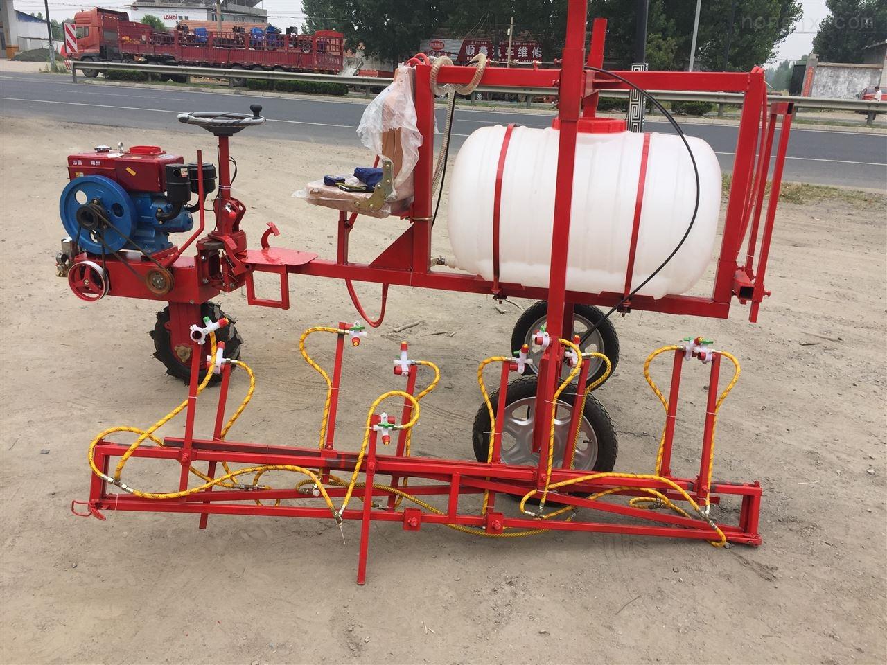 农用框架式打药喷雾器 手推电动小型喷药机
