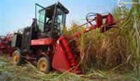 4GZ-GZ100/125型整杆式甘蔗收割机